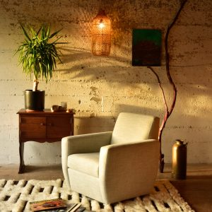 Accent chair and plants in a living room