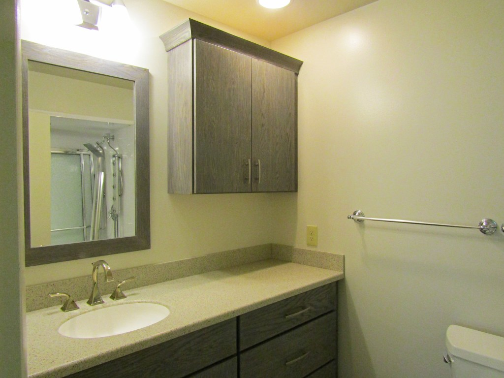 Refined Bathroom Remodel (B-101)
