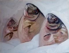 'Étude du poisson de St. Peters' - Marché aux poissons de Kadikoy' by M. Harrison-Priestman - oil on linen, 35 x 45 cm, 2020.