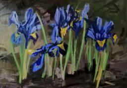 'Hommage à l'iris' - by painter M. Harrison-Priestman - acrylic on canvas, 35 x 50 cm, 2021.