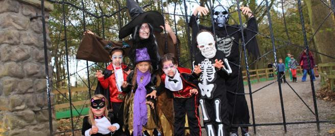 banner-halloween-enchanted-forest1.jpg