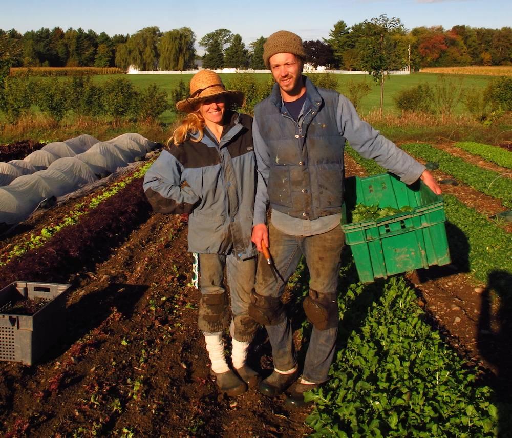 Small Farms - Harrowsmith