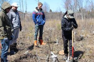 Tree Planting demo