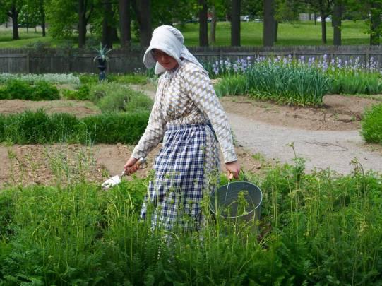 Victorian Garden Album 1
