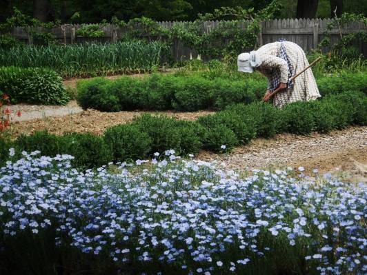 Victorian Garden Album 10