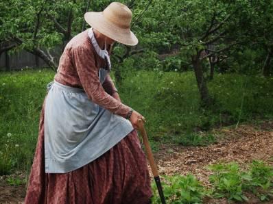 Victorian Garden Album 12