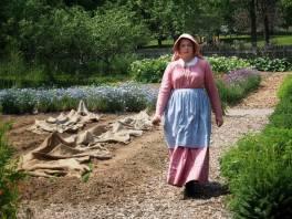 Victorian Garden Album 17