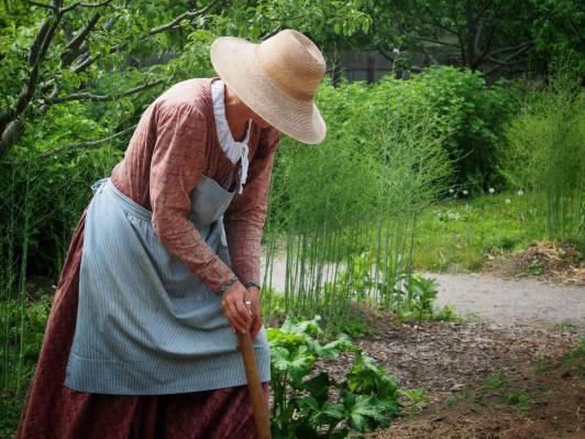 Victorian Garden Album 24