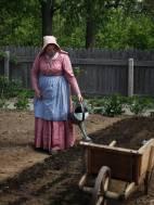 Victorian Garden Album 4