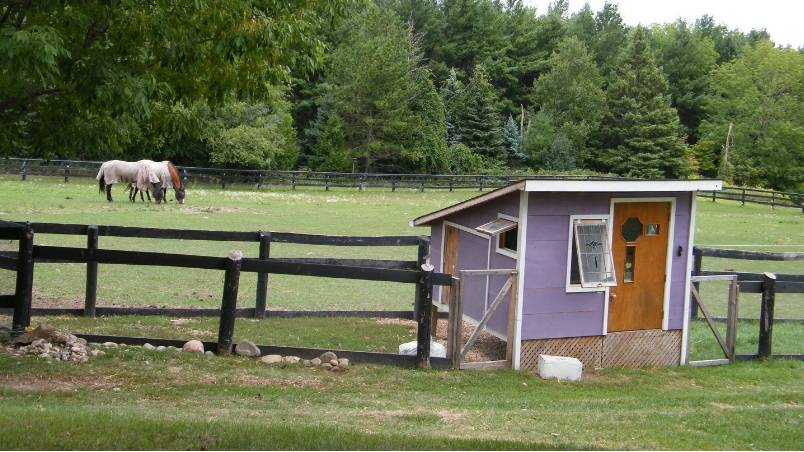 Chicken Coops and Curb Appeal