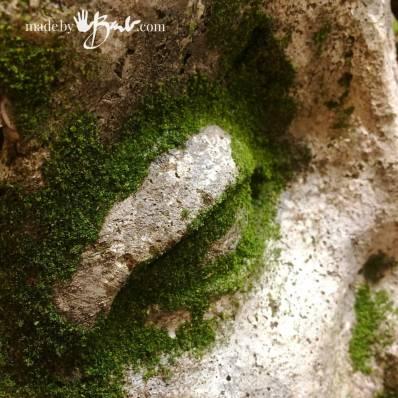 How-to-Make-Moss--madebybarb-13