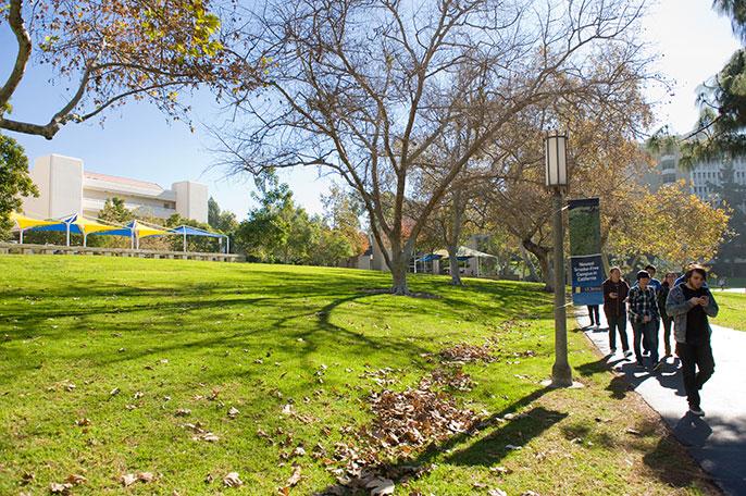 UC Irvine landscaping