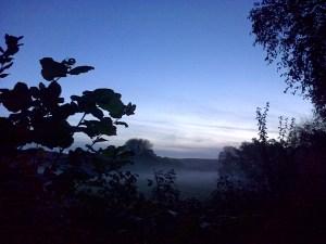 Sedgemoor-20141115-01094