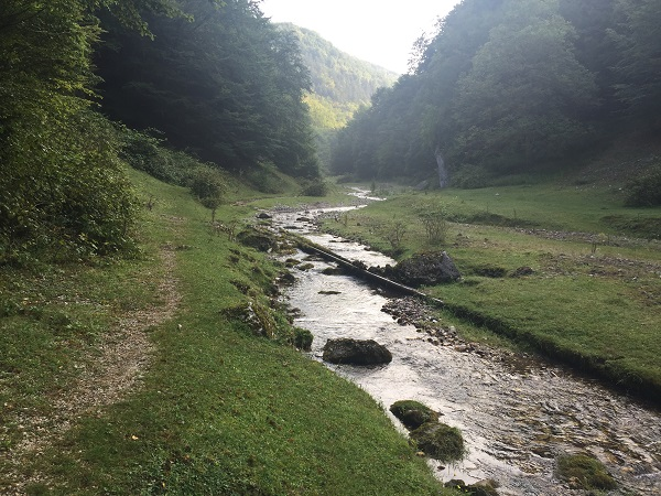 Valea Sighistelului