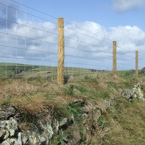 HT-Stock-fencing