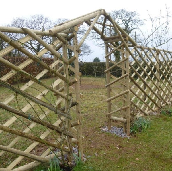 Rustic Trellis & Rustic Arch