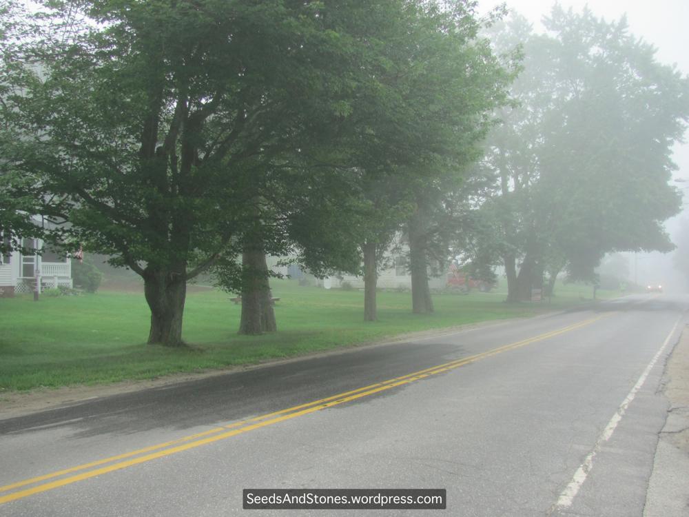 fog water harvesting pdf free