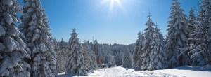 Winterurlaub im Harz und in der Harzregion