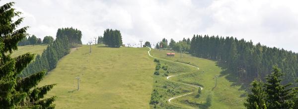 Sommerrodelbahn im Harz - St. Andreasberg