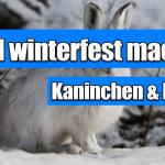Kaninchenstall winterfest machen | So einfach geht das!