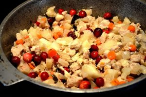pumpkin-4-cranberry-chicken-stuffing