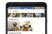 خدمة صور جوجل تستطيع تمييز الحيوانات الأليفة