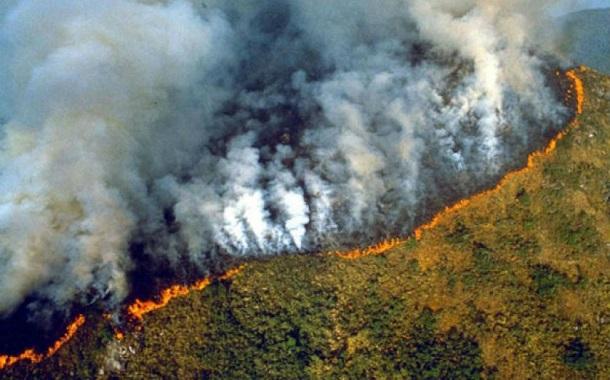 حرائق «الأمازون» ..... الاقتصاد والسياسة والمناخ