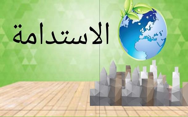 ورشة بيئية توصي بنقل المسؤولية المجتمعية من التطوع إلى برامج مستدامة