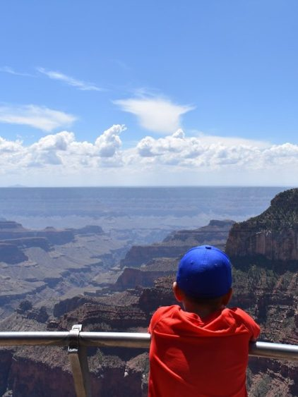 A child in a red T-shirt with a bright blue cap looks out over the Grand Canyon.