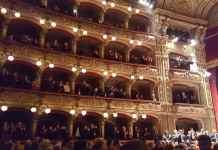Palchi Teatro Bellini, Catania