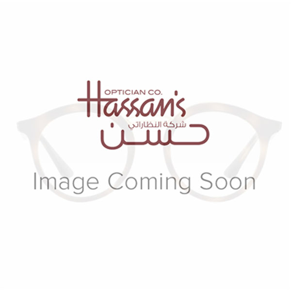 Order Online Ray Ban