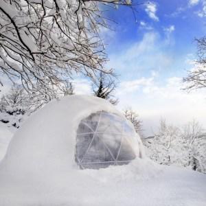 Winter Garden Igloo