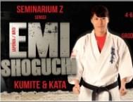 seminarium_e-shoguci_4-3_small