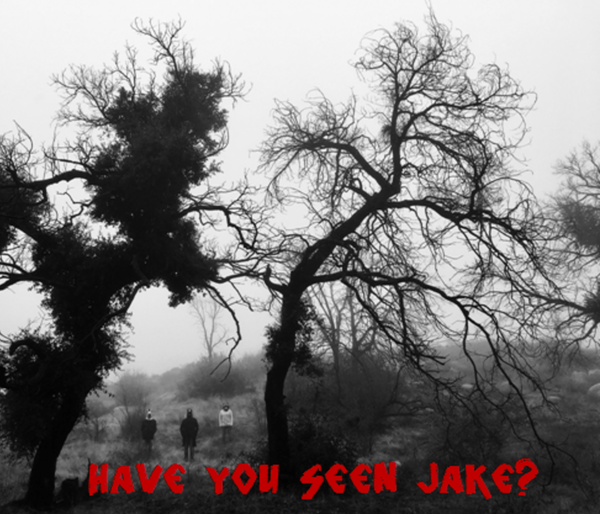 Have You Seen Jake