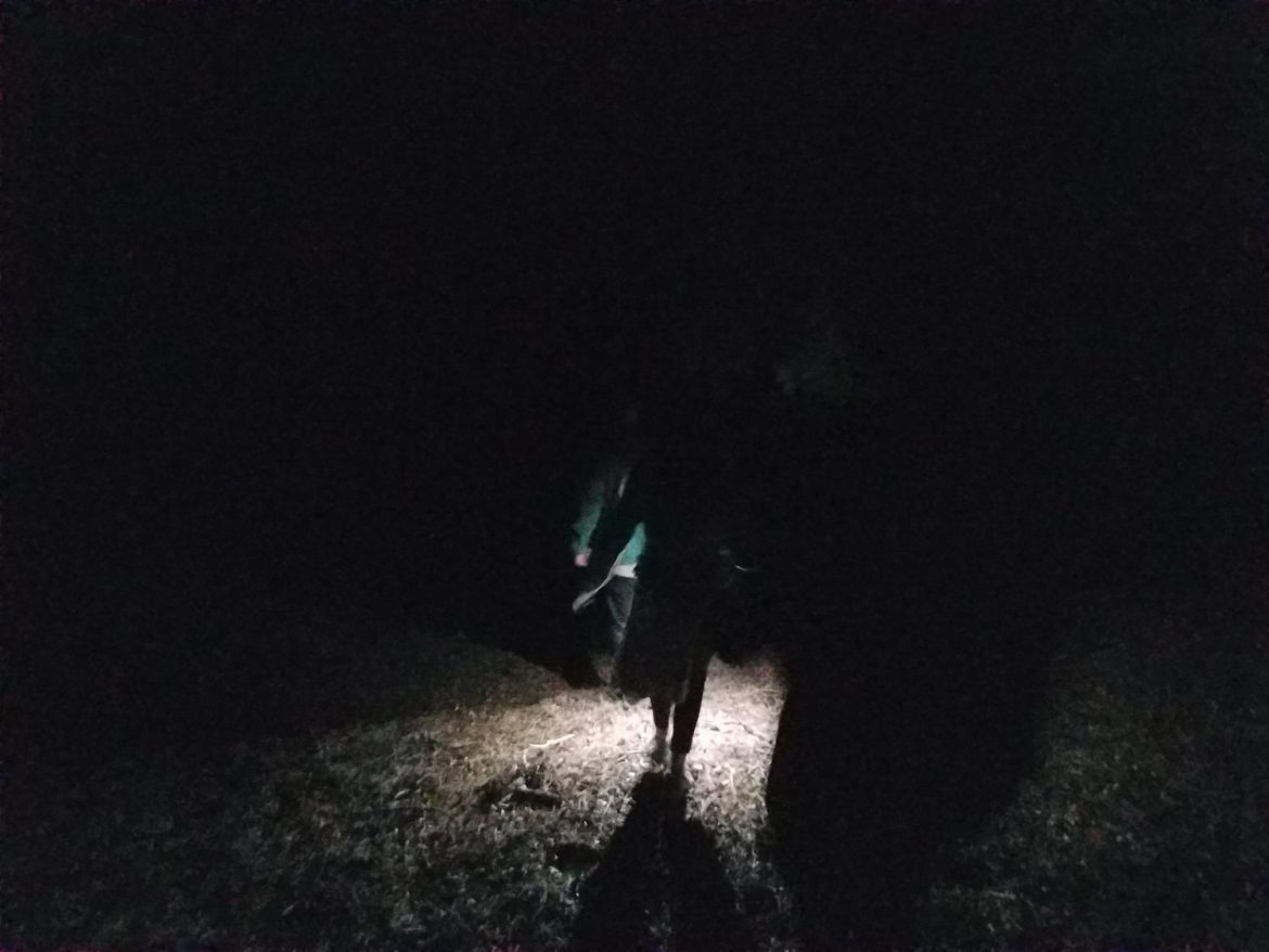 The Boanthropic Lead us Up the Mountain and Urge us to Save The Moon Child - The Society - Immersive Theater - Trans-media on-going immersive experience ARX