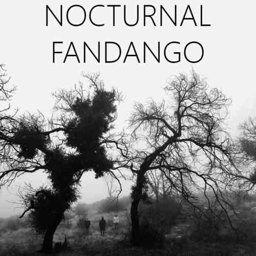 Nocturnal Fandango - Have You Seen Jake - The Sudden Loneliness Gift - Trauma - Immersive Theater