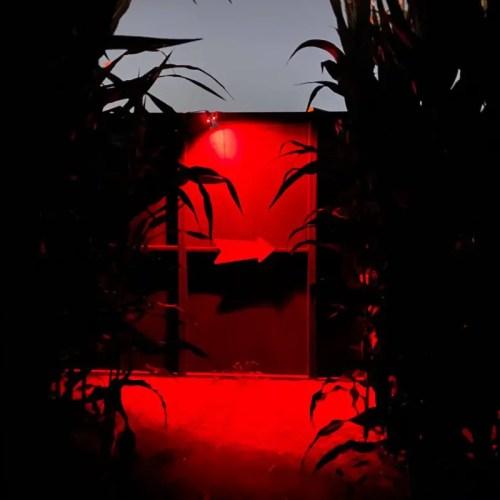 The Fleshyard, Perdition Home, Haunted House, Haunted Cornfield Maze, Chino, Ca, Best CA Haunted Cornfield Mazes