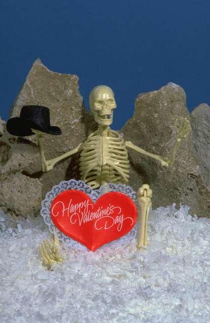 Funny Bones 67