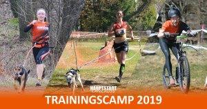 1. Hauptstadt Canicross Trainingscamp @ Jacobs Hof Beelitz