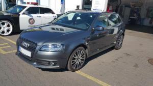 Audi Rosa