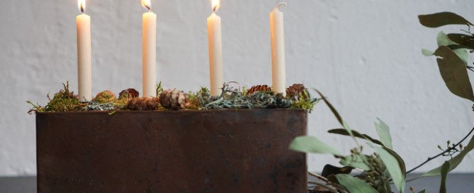 Verlosung Gartenblog Berlin 3. Advent