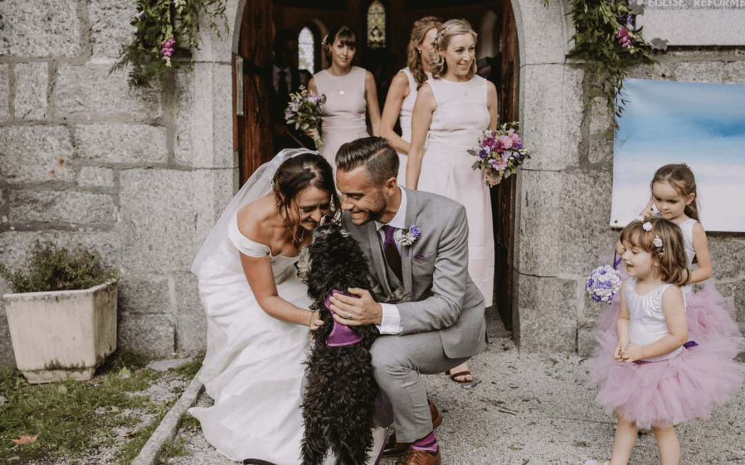 Dogs in Weddings – Happy National Puppy Day!