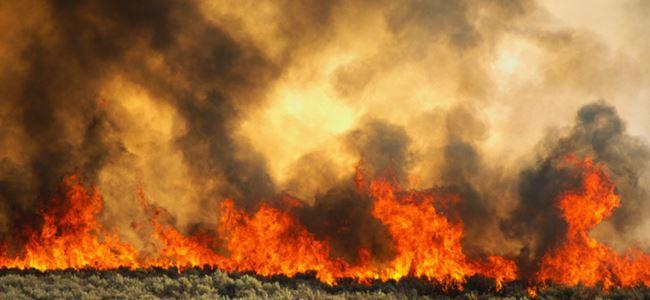 Ağırdağ ve Zeytinlik'te Yangın