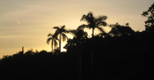 Egal zu welcher Reisezeit in Kuba gibt es malerische Sonnenuntergänge.