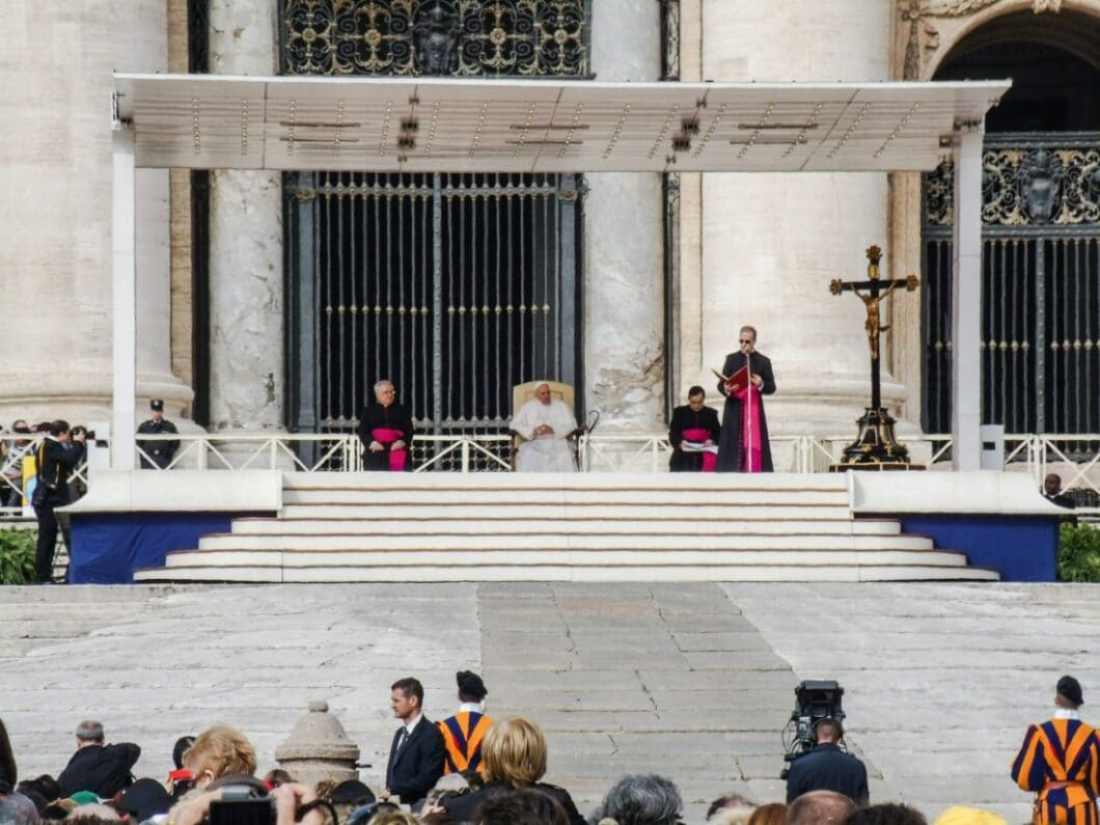 The beginning of the Papal Audience.