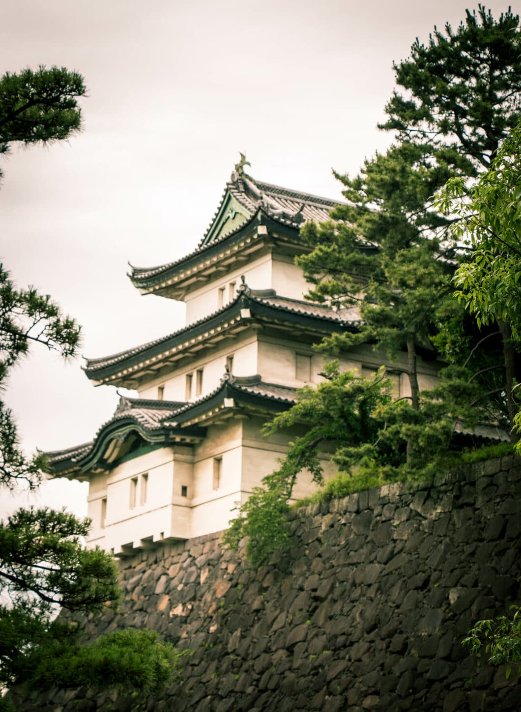 What to Know Before Exploring The Imperial Palace in Tokyo