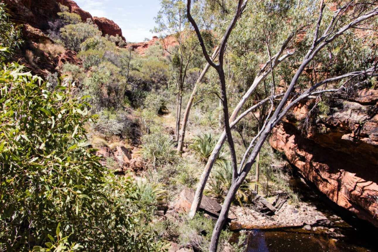 The Garden of Eden - Australia