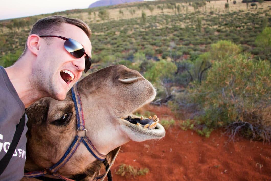 uluru camel