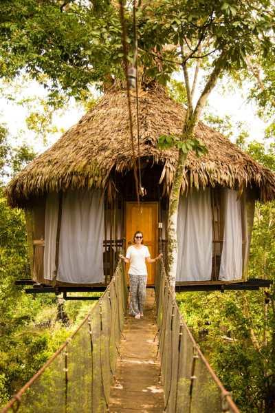 Treehouse Lodge