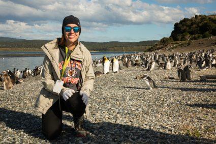Penguins Martillo Island